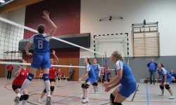 Wer hat Lust Volleyball zu spielen?