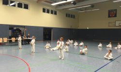 Taekwondo Gürtelprüfung 24.11.17 erfolgreich